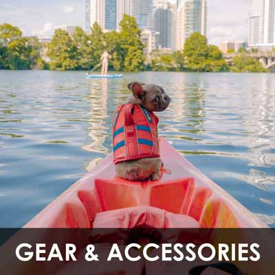 dog gear and accessories