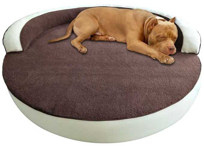 bully bed
