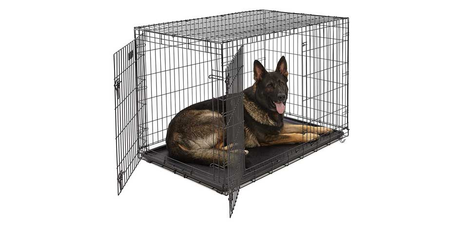 icrate dog crate