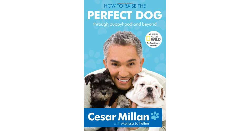 cesar milan how to raise the perfect dog